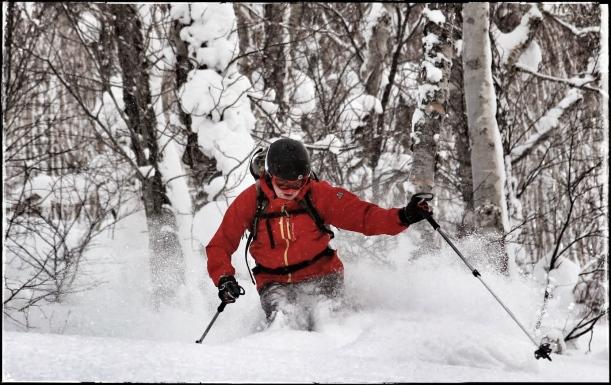 Tree-skiing, Hokkaido