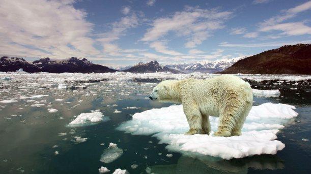 8845010-stop-global-warming